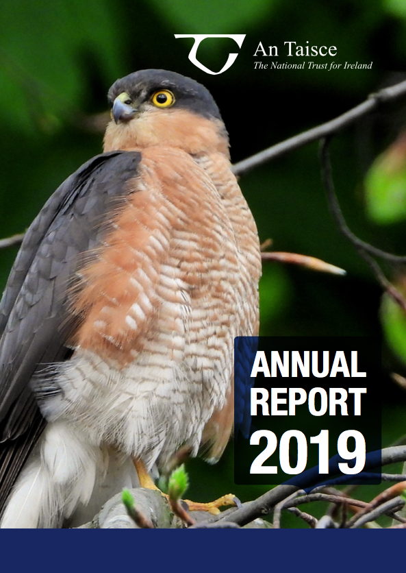 2019 Annual Report cover with hawk
