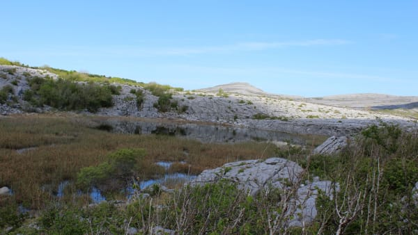 View of the Burren including limestone pavement and wetland