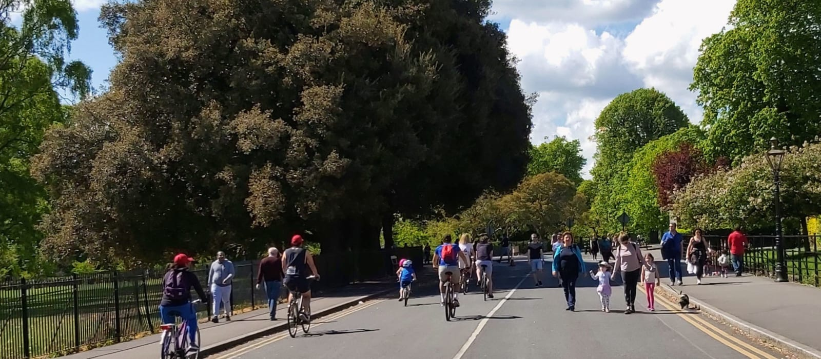 Phoenix Park - Encouraging Active Travel and Curtailing Car Parking